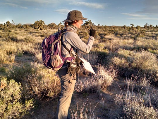 Researcher Kelly Iknayan conducts a bird survey in the Mojave Desert.