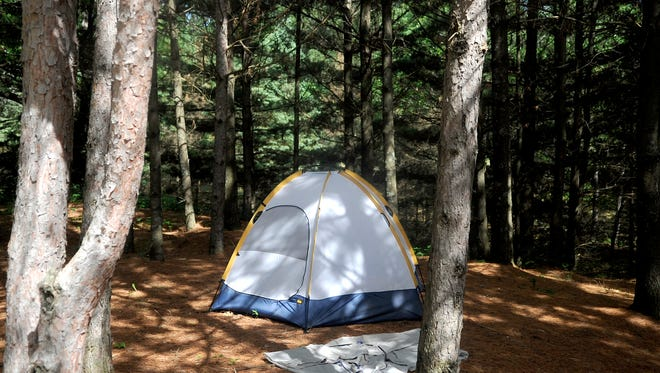 A tent stands amid the trees in Ann Lake Campground on June 20. As the afternoon wore on, the campground began to fill. All 36 sites may fill up on a busy weekend. State forest campgrounds don't accept reservations.