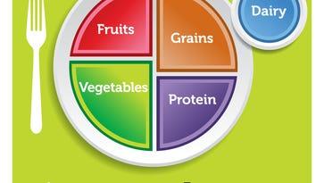 Vegetarian vs. Plant-based