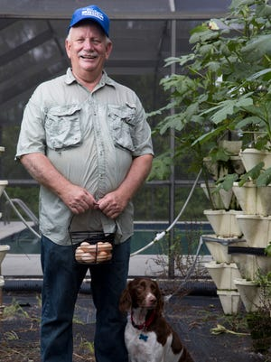 Collier County Clerk Dwight Brock, along with his Brittany Spaniel Daphne, stands in his hydroponics garden with a basket of freshly picked eggs outside his home just east of Golden Gate on July 22, 2016.