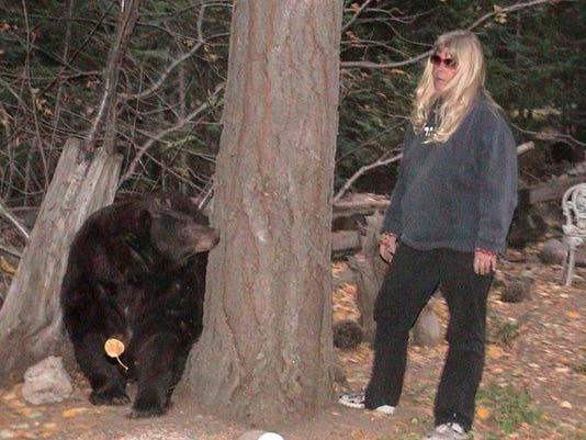 bear lady ann bryant.jpg
