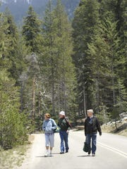 Henny Goodman, left, her husband Peter Goodman, and Robert Vrugt of the Netherlands walk along Generals Highway while waiting for the Sequoia Shuttle near the Lodgepole Visitor Center in Sequoia National Park.