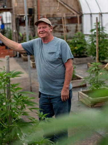 "Tom Owens poses among his medical marijuana plants in his secured growing facility Friday, June 9, 2017 in Maple Valley Township. Owens, 63, is a medical marijuana user and licensed caregiver for five patients. Owens uses medical marijuana to manage chronic pain from back problems and a hip replacement, and hopes to open a dispensary in Brown City. ""I used to be a farmer — I farmed corn, soybeans, hay and alfalfa — so I like growing (cannabis), but mostly I just want to help people. There's not many places people can get cannabis close, they have to drive far. I just thought with a dispensary here, it would be easier for them."""
