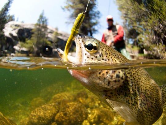 -prestowebartsportsfishing3.jpg_20140419.jpg