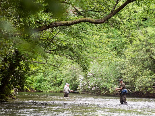 Fly fisherman wait for a fish to bite Tuesday morning May 30, 2017 in the Davidson River along U.S. 276 in the 