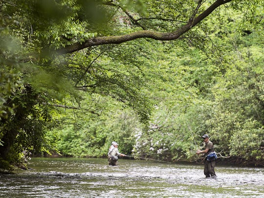 Fly fisherman wait for a fish to bite Tuesday morning May 30, 2017 in the Davidson River along U.S. 276 in the  Pisgah Forest. A 2014 study shows that mountain trout fishing brought $383 million to the North Carolina economy.
