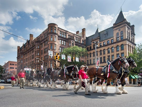 The Budweiser Clydesdales pass through Continental Square on the way to the stadium in York.