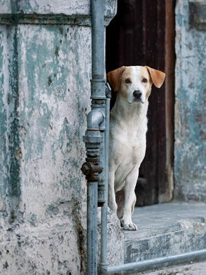 """Hola Señora,"" by Pat Kennedy-Corlin is part of the exhibit ""Cuba Through Our Lenses: A Photographic Journey with Tres Amigos"" which will be on display at the New Hampshire Art Association's Robert Lincoln Levy Gallery in Portsmouth in September."