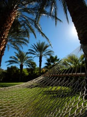 A hammock is suspended between two palm trees at the Parker Palm Springs.