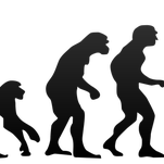 Roberts: Arizona governor: Don't monkey with teaching evolution in science class