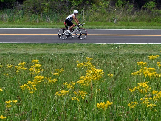Wildflowers bloom as a biker ride the Natchez Trace