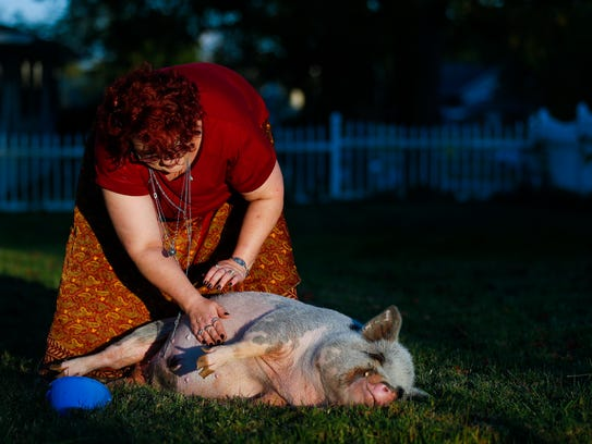 Carolann Scott Leo rubs the belly of her pig Francis