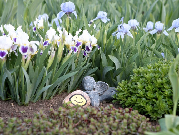 An angel and smiley face sit in a field of dwarf irises;
