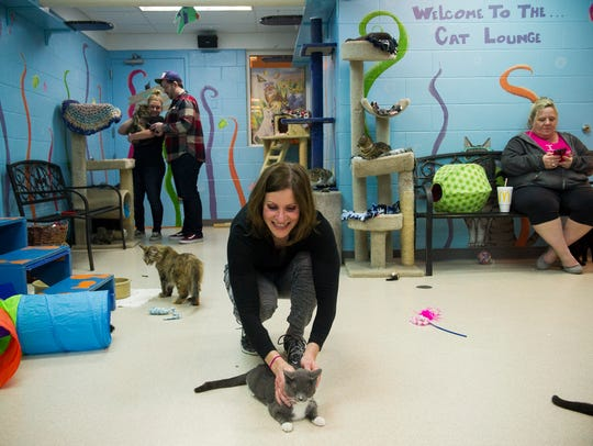 Annette Gries, of Evansville, pets a cat named Patti,