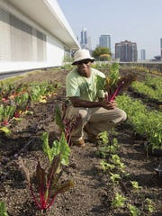 """This undated photo provided by Ten Speed Press shows Stacey Kimmons, Windy City Grower at McCormick Place in Chicago, with swiss chard included in the book, """"The Rooftop Growing Guide,"""" by author Annie Novak, published in 2016 by Ten Speed Press, an imprint of Penguin Random House LLC. (Naima Green/Ten Speed Press via AP)"""