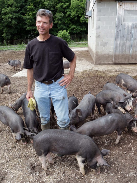 she n Berkshire Pigs0813_gck-03.jpg