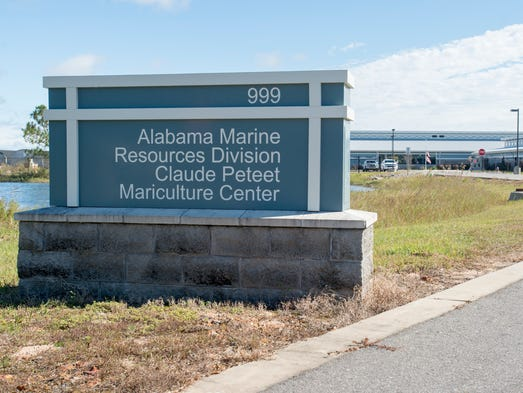 Commissioner suggests moving troubled fish hatchery to for Alabama fish hatcheries