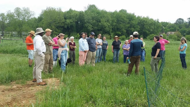 """Visitors came from as far as Washington, D.C., to hear Stewart Lundy and Natalie McGill share their experience raising heirloom vegetables, flowers, eggs and meat for local markets during the """"Permaculture Profits"""" field day at Perennial Roots farm in Accomac Friday."""