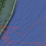 The path Mary Lee has traveled recently, as shown on the OCEARCH website.