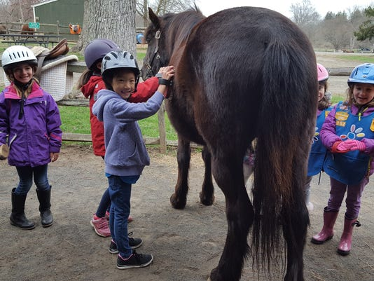 Children can 'Meet the Ponies' PHOTO CAPTION