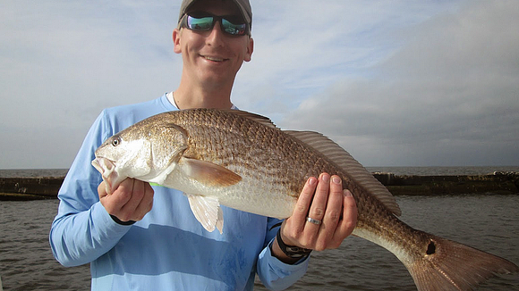 Near-shore fishing producing big numbers of slot redfish.