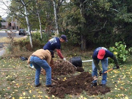 United Way of Larimer County volunteers plant trees at Avery Park in this file photo. The agency is participating in Colorado Gives Day on Dec. 10,, along with more than 2,000 other nonprofits across the state.