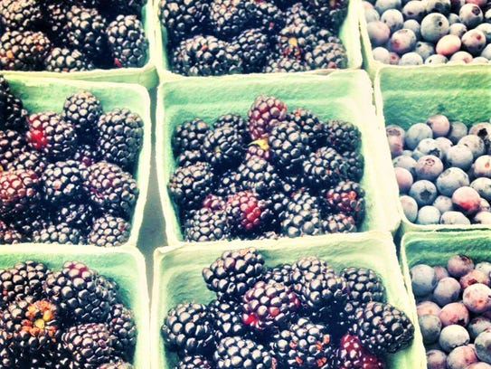 "Blackberries and blueberries are some of the ""pick-your-own"""