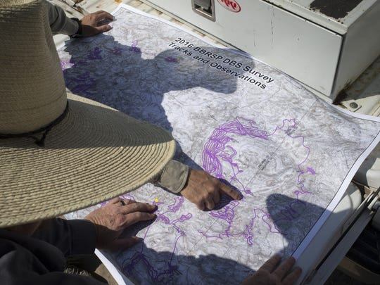 Nick Havlik of Texas State Parks views a map tracking sheep movement in Big Bend Ranch State Park,Texas.