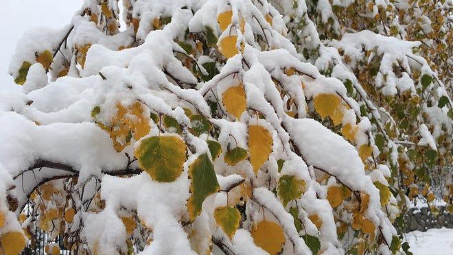 Cold air mass brings freeze warnings to California.