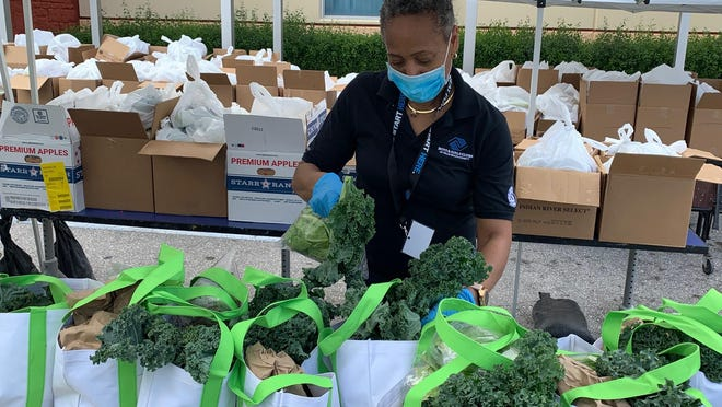 The Town of Palm Beach United Way is helping fund the Boys & Girls Clubs of Palm Beach County's Farm to Family food program. Local farmers pick fresh produce that can no longer be sold to restaurants or farmers markets. The Boys & Girls Clubs distributes bags of food each week to its neediest families at club locations throughout the county.
