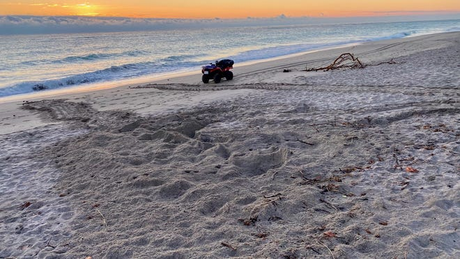 Evidence of a leatherback sea turtle nesting site in Juno Beach on Friday morning.