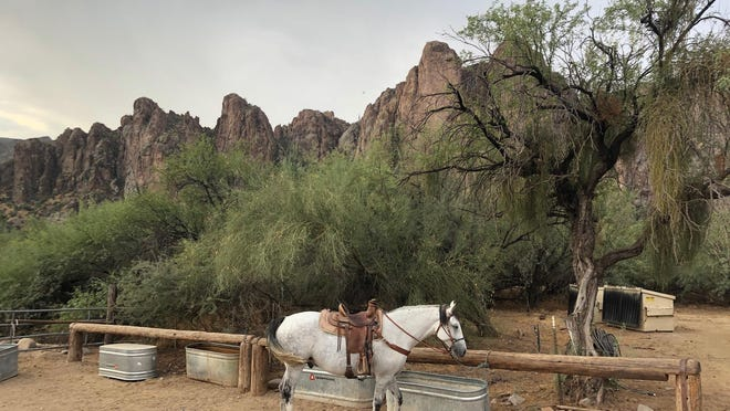A horseback ride with Saguaro Lake Guest Ranch near Scottsdale, Arizona, offers a unique view of the desert.