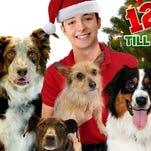 "The ""12 Dog Days Till Christmas"" was filmed in South Carolina."