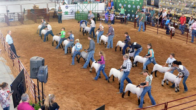 The Wayne County Junior Fair will proceed as normal this year while the Senior Fair animals and still displays will not be shown this year due to the coronavirus pandemic.