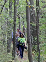 Enjoy a night hike through the Great Swamp in Chatham tomorrow.