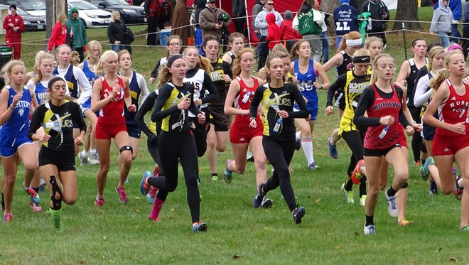 Colonel Crawford's girls race off of the Amman's Park starting line at the district meet Saturday afternoon.