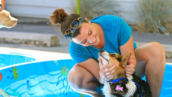 Callie Gullett of the Stayton Veterinary Hospital gives a grateful pooch a refreshing bath at Paws for the Cause.