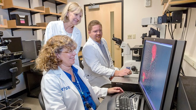 Graduate student Brock Arivett, Sharon Berk and Mary Farone were involved in research that led to the discovery of two species of bacteria.