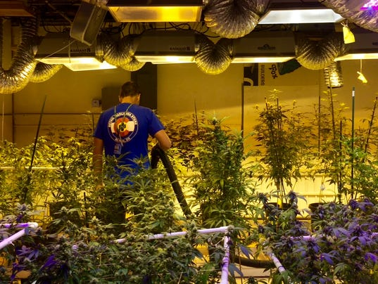 how to become a master grower weed ontario