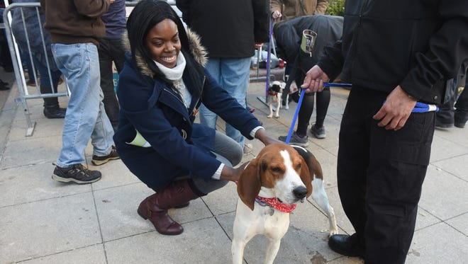 Michelle Merriweather, of Detroit, enjoys the playful Saxon during the Michigan Humane Society's Pets for Pets adoption event held at Cadillac Square on Tuesday.