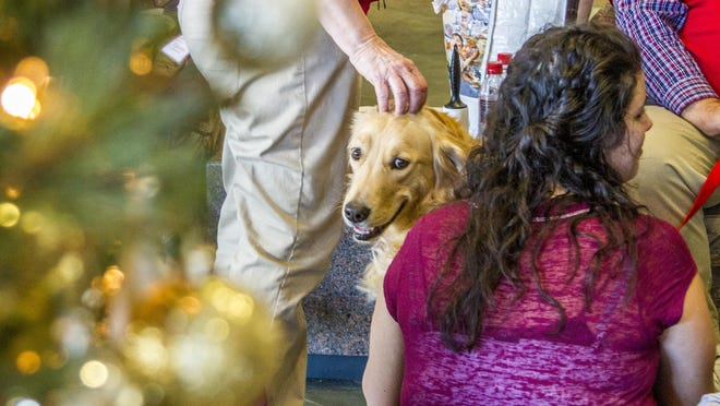 A therapy dog sits in the lobby of Southern Utah University's library as students take a break Friday from studying for their finals. The therapy dog served as a stress reliever for the students.
