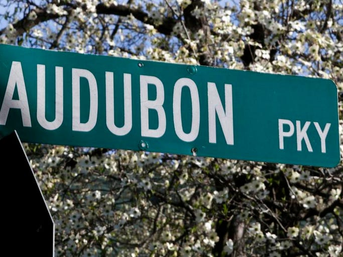 The Dogwood Festival is coming back to Audubon Park. April 16, 2014