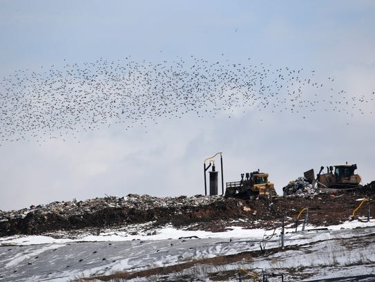 Waste is moved by bulldozers at High Acres Landfill