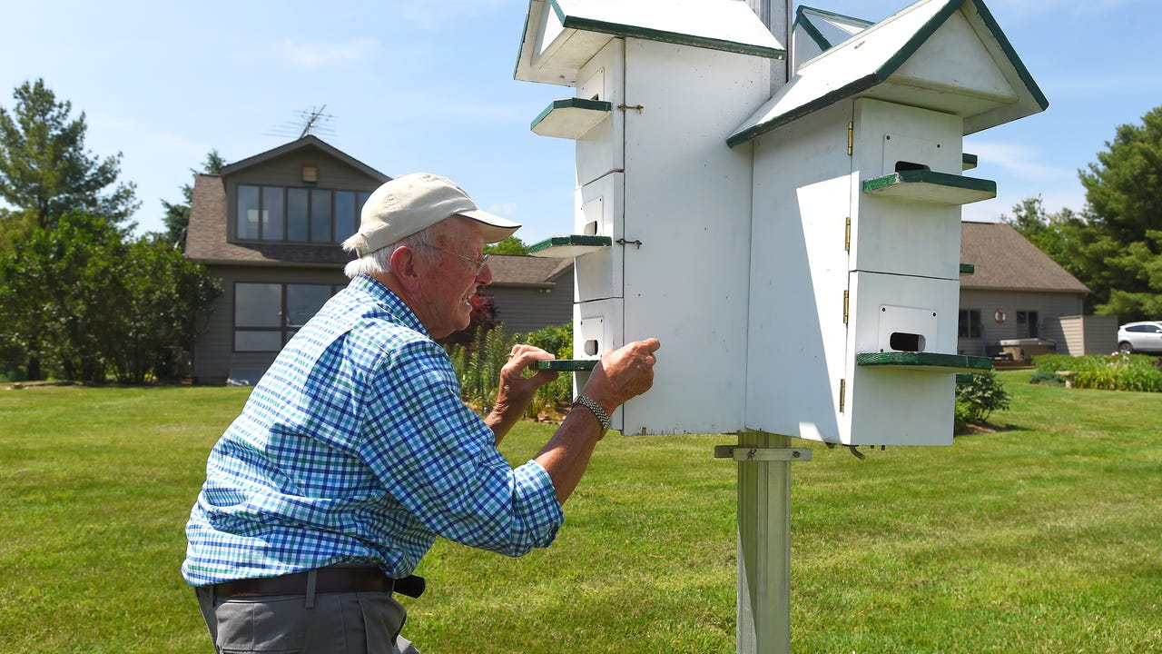 Mixon Darracott takes great pride in his colony of Purple Martins. The Fishersville resident is very passionate about these swallows that have captured his devotion and attention.