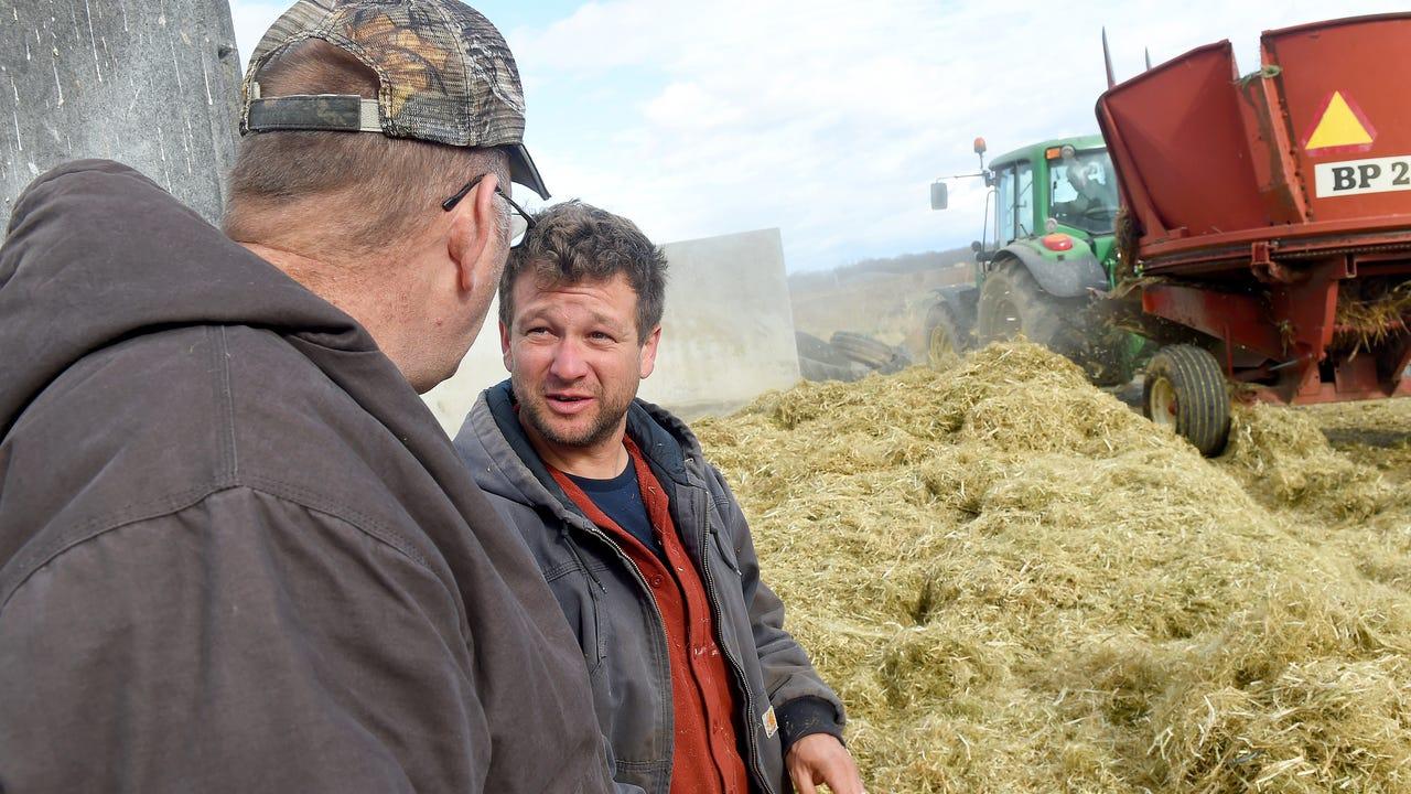 Farmers licensed to grow hemp in Virginia believe the crop is worth the challenges.