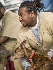 "Hakeem Wilson, a senior inmate-handler in the Prison Greyhounds program at Putnamville Correctional Facility in Greencastle, Ind. pets Chimera on Monday, March 19, 2018. Prison Greyhounds is an all-volunteer 501c3 nonprofit organization headquartered in Indianapolis. The program transports ""retired"" racing greyhounds from Daytona Beach to Putnamville Correctional Facility where they learn house manners from inmate-handlers before they are adopted upon completing the program."