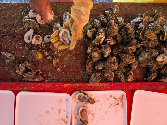 A new Texas law passed via House Bill 1300 will allow for the implementation of an oyster mariculture program, which will provide the growing of cultivated oyster. The bill takes effect Sept. 1, 2019.