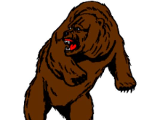 636072877727327807-centralbears.png