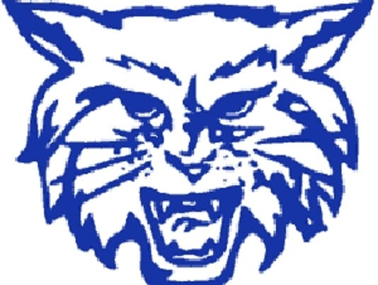 Dallastown Wildcats logo