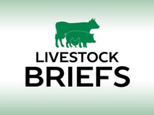 636178875333600791-636095442289348478-Livestock-briefs.jpg
